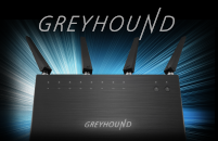 Greyhound Small